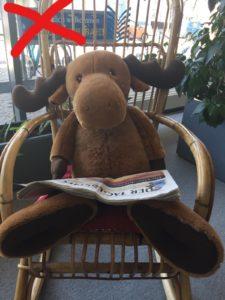 Großer Plüsch-Elch mit Zeitung im Schaukelstuhl in der Stadtteilbibliothek Karow